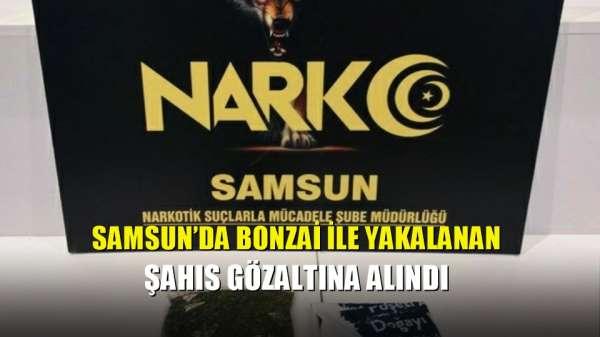 Samsun'da bonzai ile yakalanan şahıs gözaltına alındı