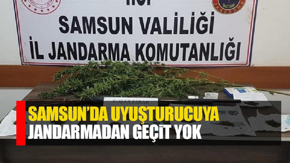 Samsun'da uyuşturucuya jandarmadan geçit yok
