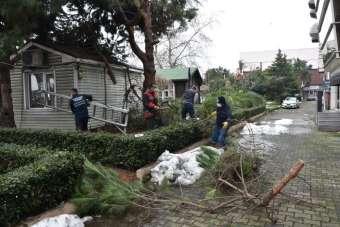 Kdz Ereğli Belediyesinden temizlik seferberliği