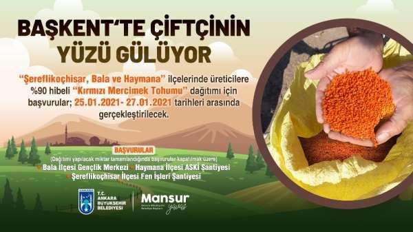 Ankara Büyükşehir Belediyesi'nden üç ilçede 400 ton 'kırmızı mercimek' tohumu hi