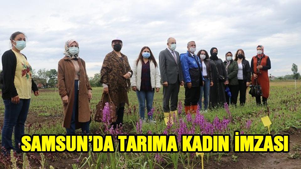 Samsun'da tarıma kadın imzası